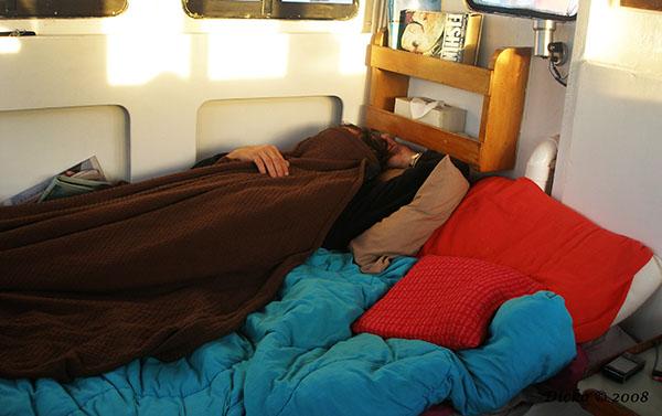 Paul sleeping as usual