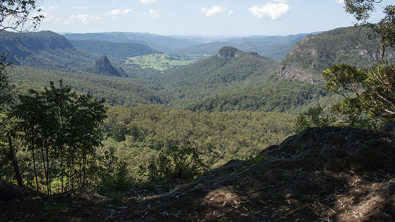 05429th Oct Lamington NP Binna Burra a 72