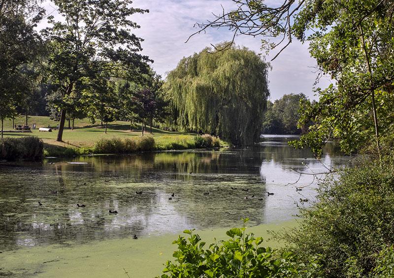 Parc du Heron, France