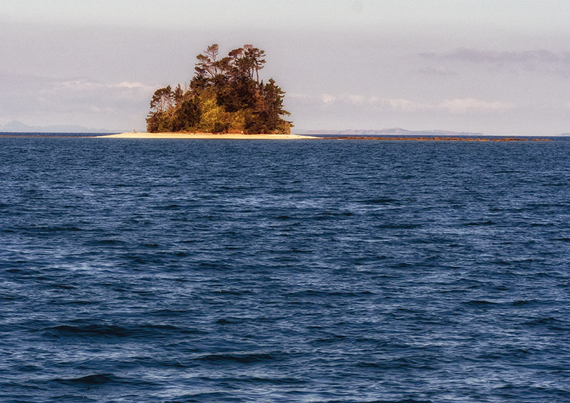 Half Moon Bay to Kawau Island, New Zealand
