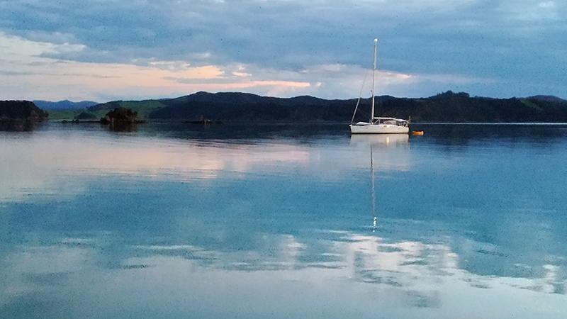 Orokawa Bay: Pristine Peaceful Beauty