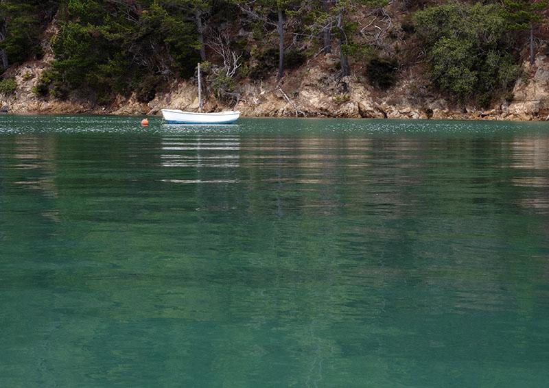Karaka Bay, Kawau Island: New Zealand