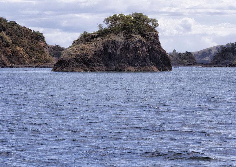 Paihia to Whale Bay: New Zealand