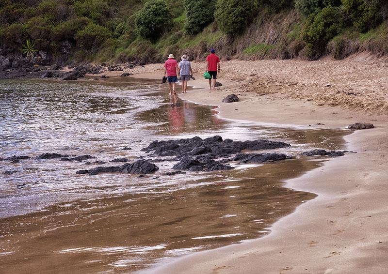 A Walk & A Dinghy Ride in Oneroa & Paroa Bays