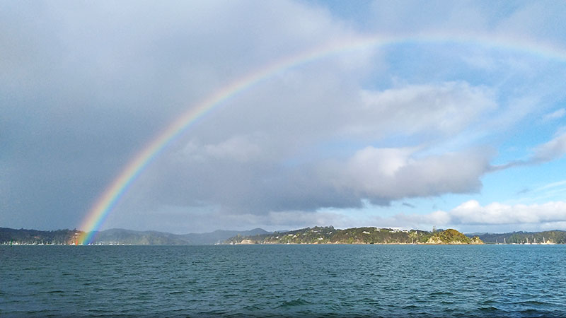 Rainbow Delight in the Bay of Islands
