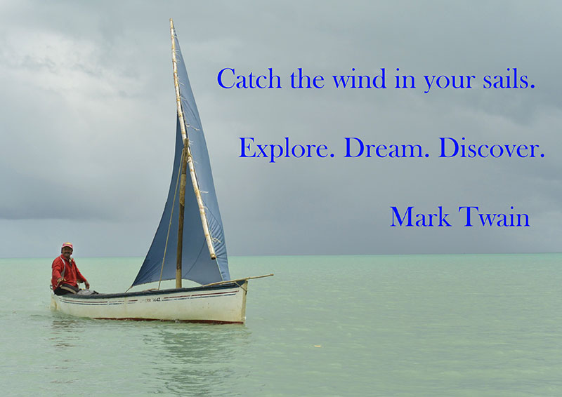 Catch the Wind in Your Sails