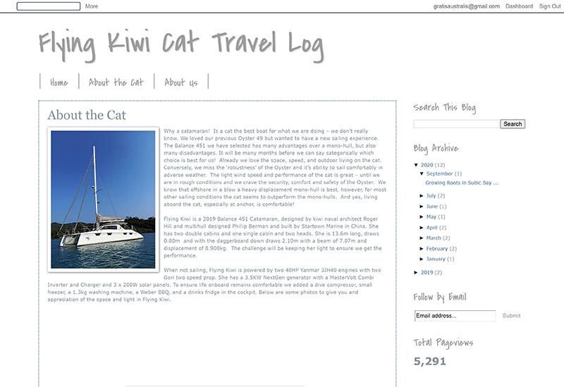 Flying Kiwi Cat