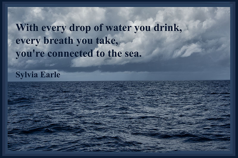 With Every Drop Of Water You Drink…
